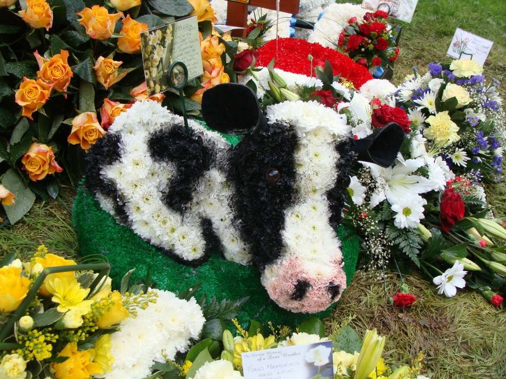 Wreath Cow